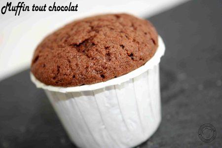 muffin_tout_chocola2