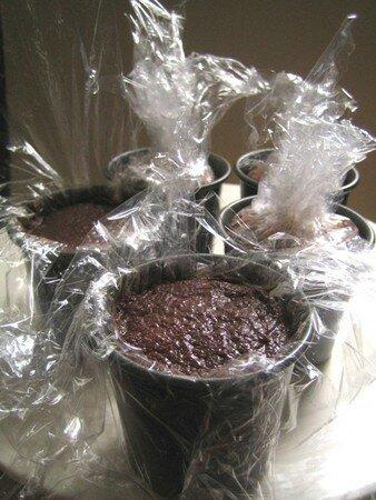 Petits_pots_de_chocolat_girlylili