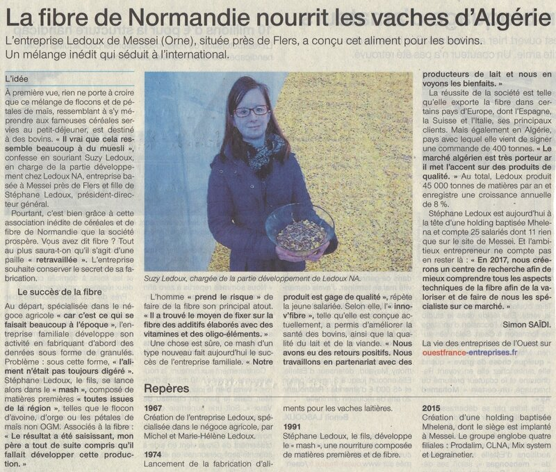 R_ussite_normande_vaches_alg_riennes