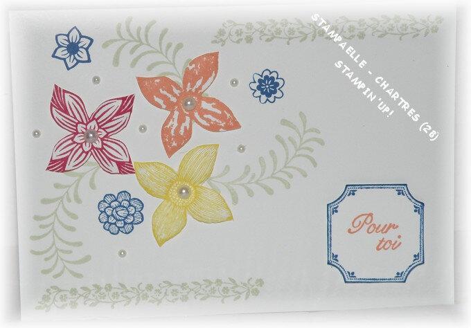 pop of petals 1