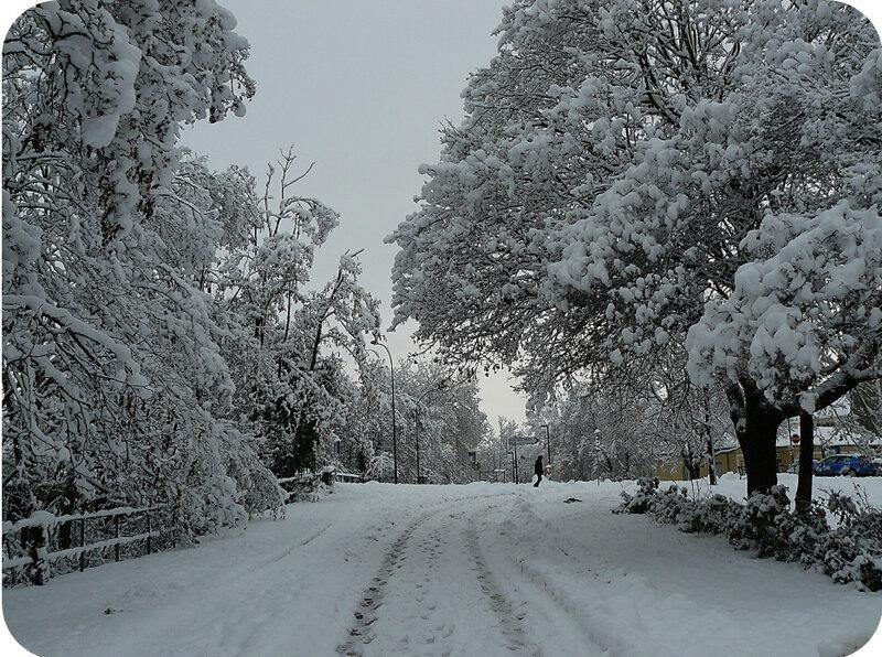 Quartier Drouot - Photo neige 6