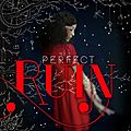 [présentation] the internment chronicles #1 : perfect ruin de lauren destefano