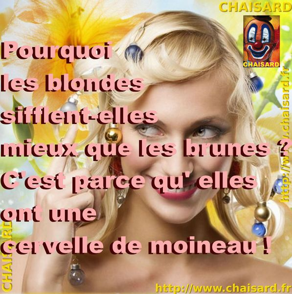 _ 0 CHAISARD BLONDE 005