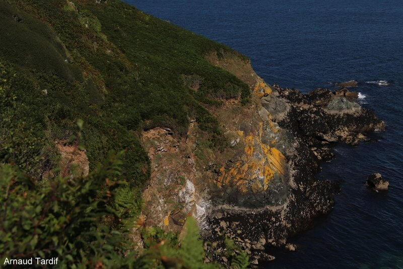 00747 Guidel - L'Ile de Groix - De la Pointe de Pen-Men au Sémaphore de Beg Melen