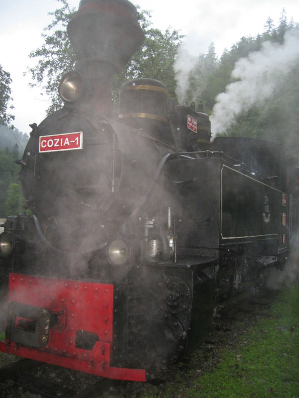 Train vapeur de Viseu de Jos