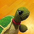Petite tortue coquette pose de profil