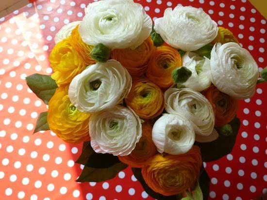 94_fleurs_pois