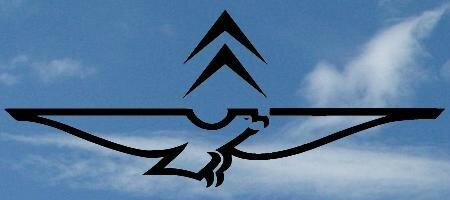 GUZZ-Y-TROEN logo