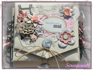 mini album (11)