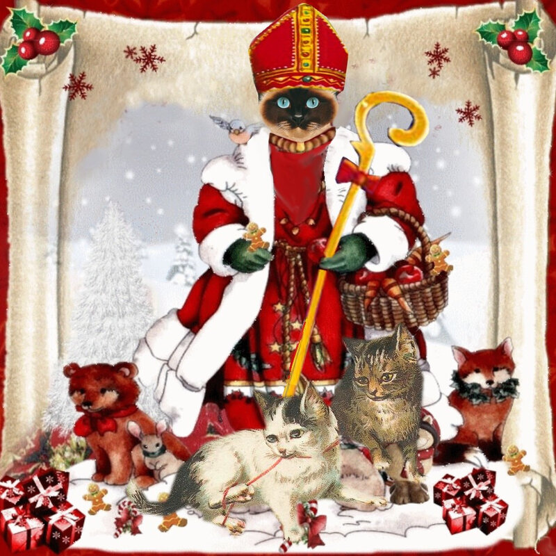 carte voeux chat saint nicolas