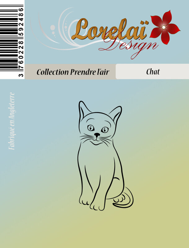 chat PACKAGING