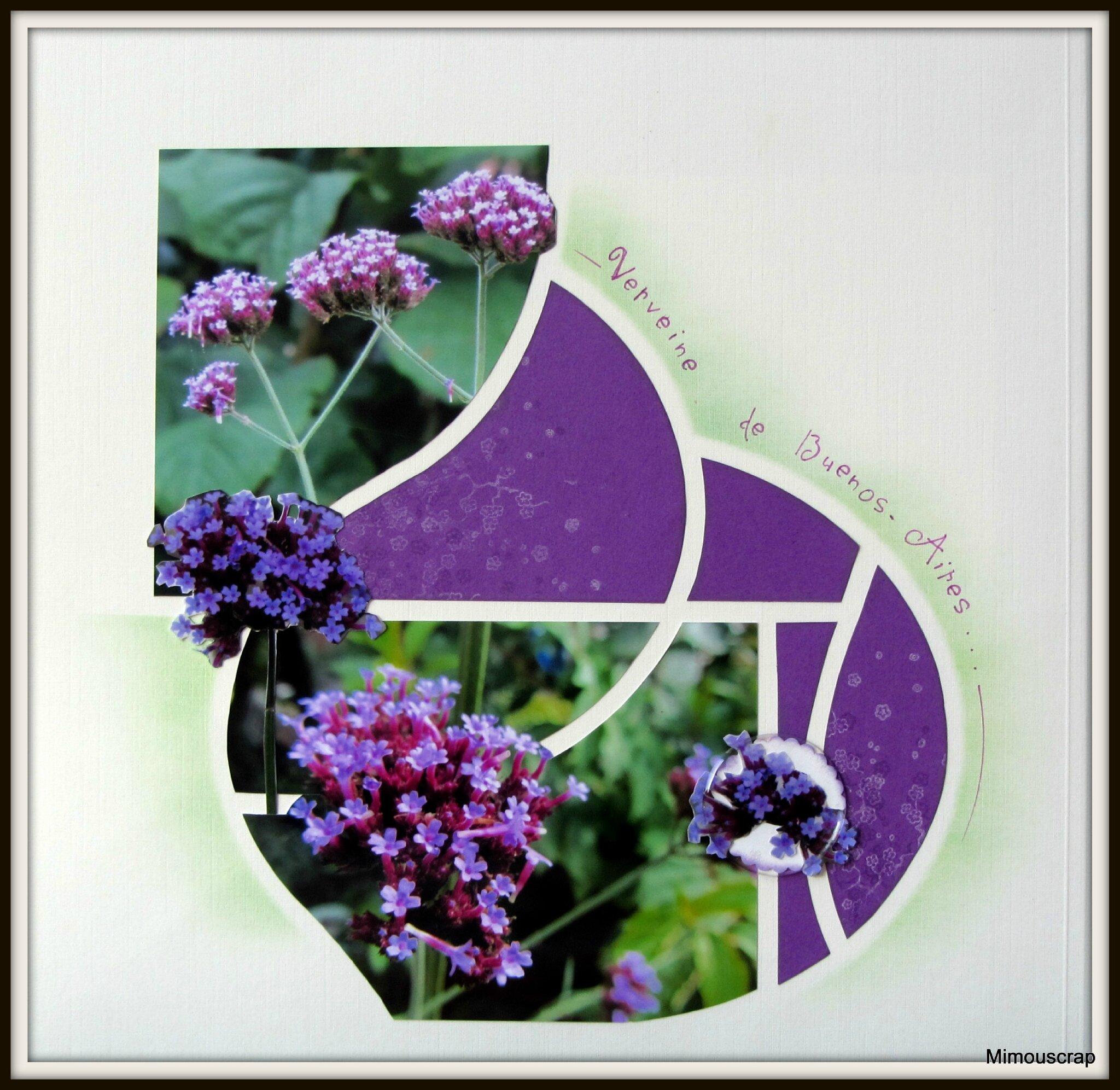 jardin automne 011