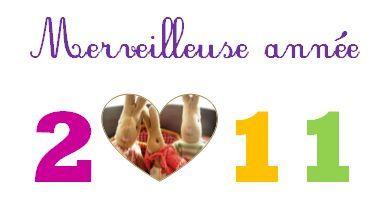 bonne_ann_e_2011_blog_fils_et_pluches