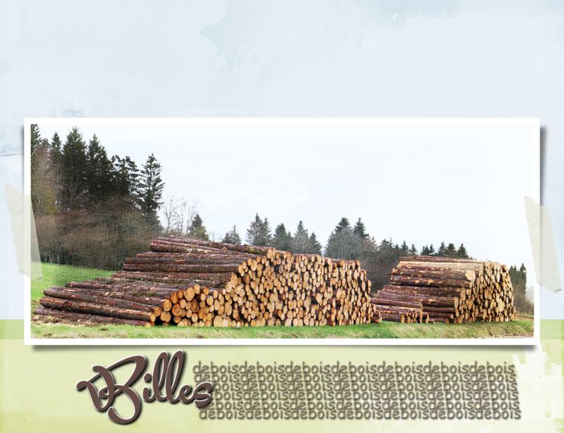 Billes de bois_C_