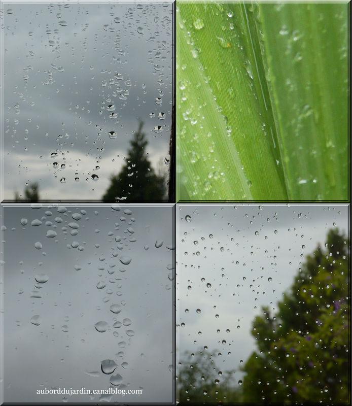La_pluie
