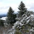 2009 03 05 Un peut de neige au sommet du suc de Mounier