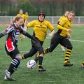 36IMG_0544T