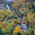 Gavarnie, forêt et cascade alentours, octobre 2013 (65)