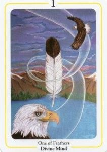 onefeather1_211x300