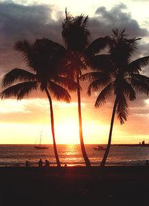 hawaii83