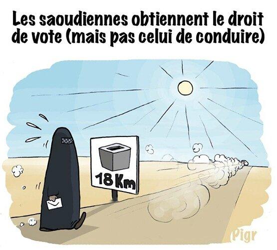 PIGR_050615_vigousse_N238_VoteAPied