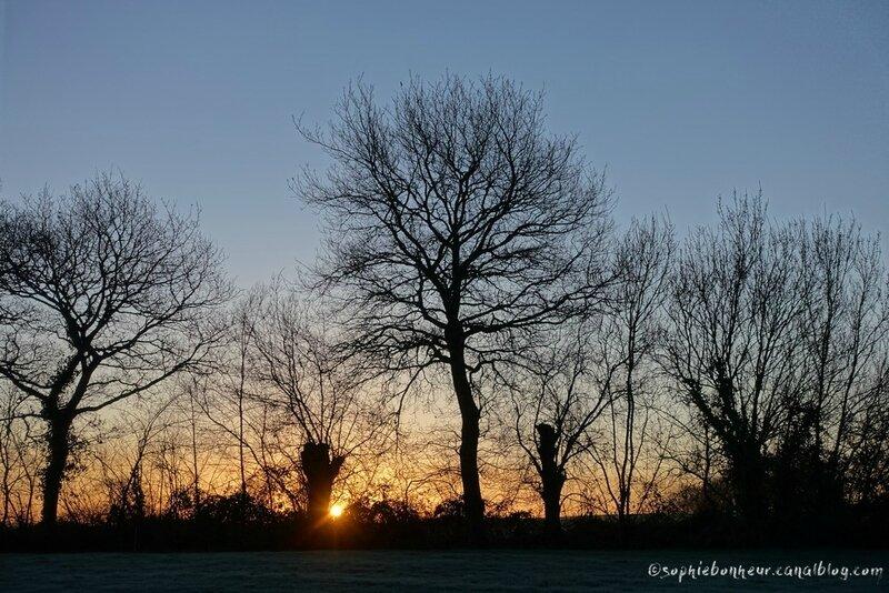f soleil lève