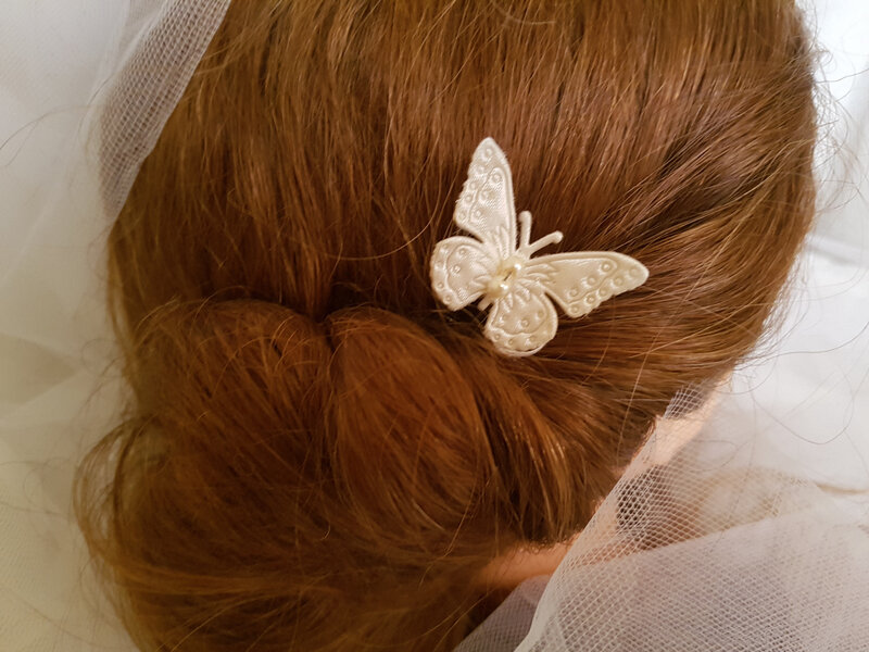 pic mariage papillon (2)