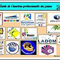 Guide de l'insertion professionnelle des jeunes de la réunion