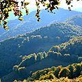 Le col de Boesou côté vallée d'Aspe...