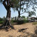 plage de mai khao_18