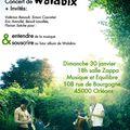 Walabix à orléans, concert et premier cd