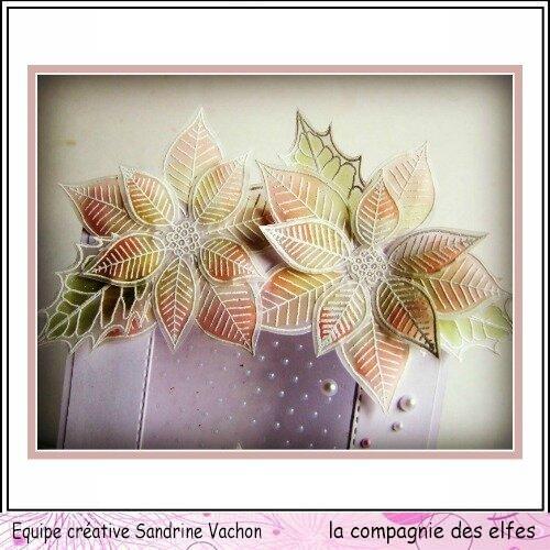 Sandrine VACHON lettre dt LCDE janv (2)