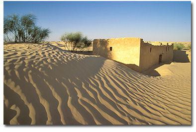 p_desertif