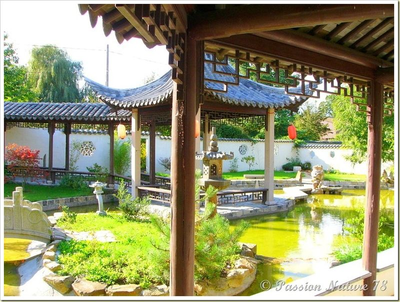 Le jardin Yili (9)