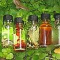 Les parfums magiques de chances et de richesse