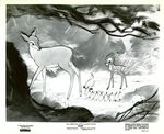 bambi_presse_1957_05
