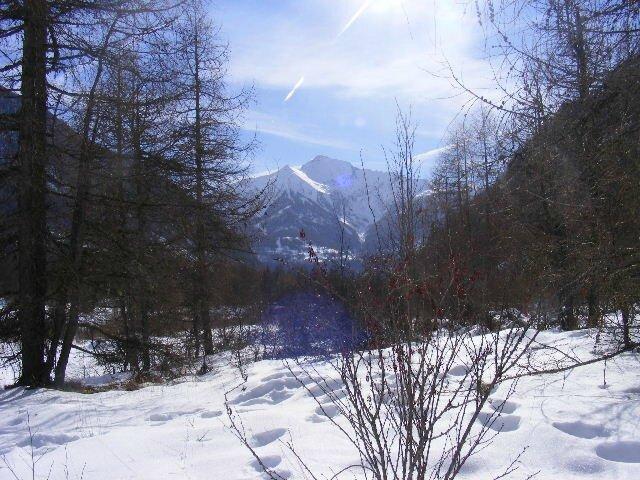 2008_091528janvier0073