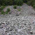 2009 06 19 Les pierres au pied du Pic du Lizieux