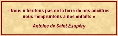 citation_02_st_ex