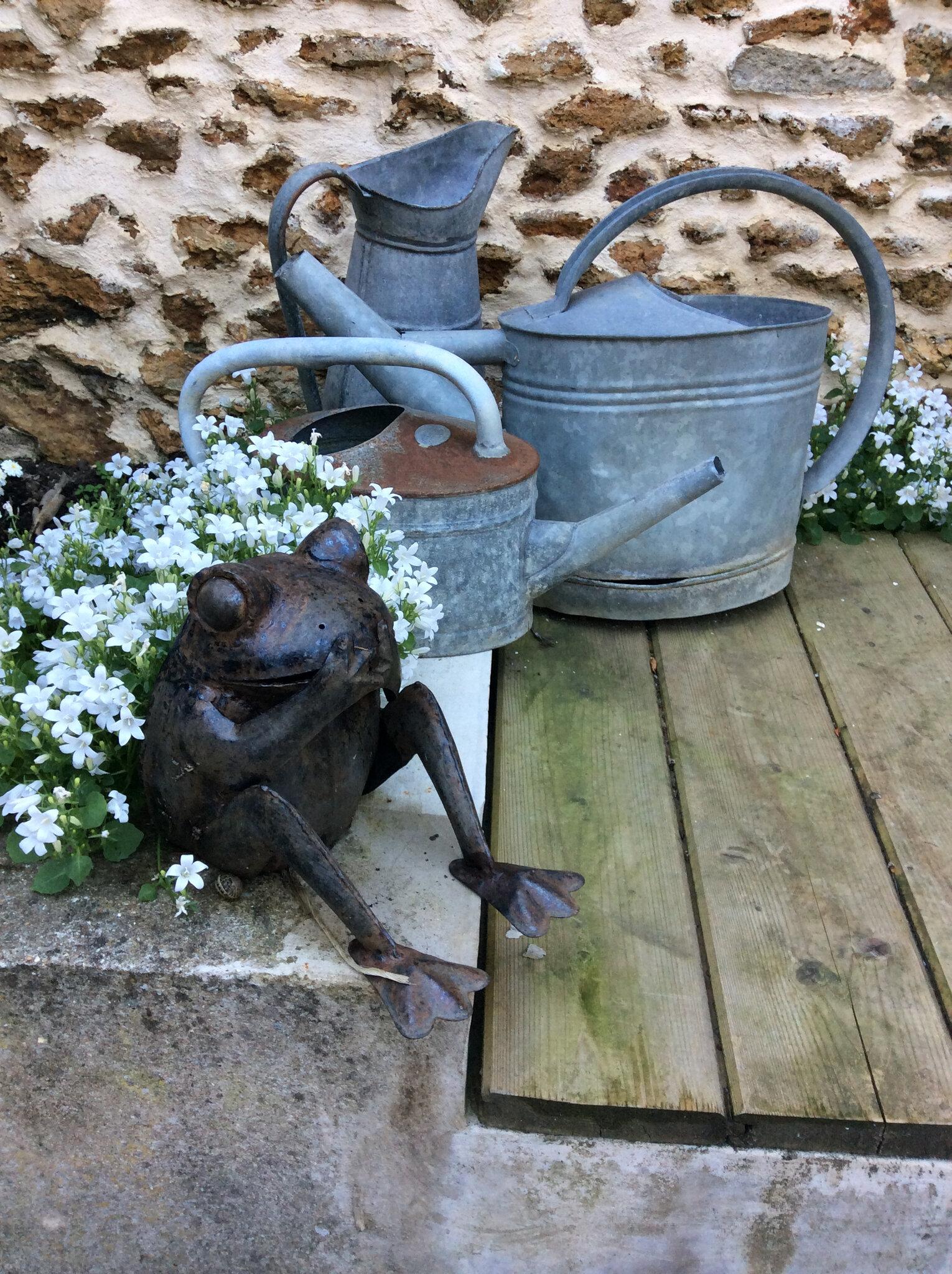 Au jardin ce matin...