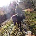 Balade à cheval dans la forêt P1080192