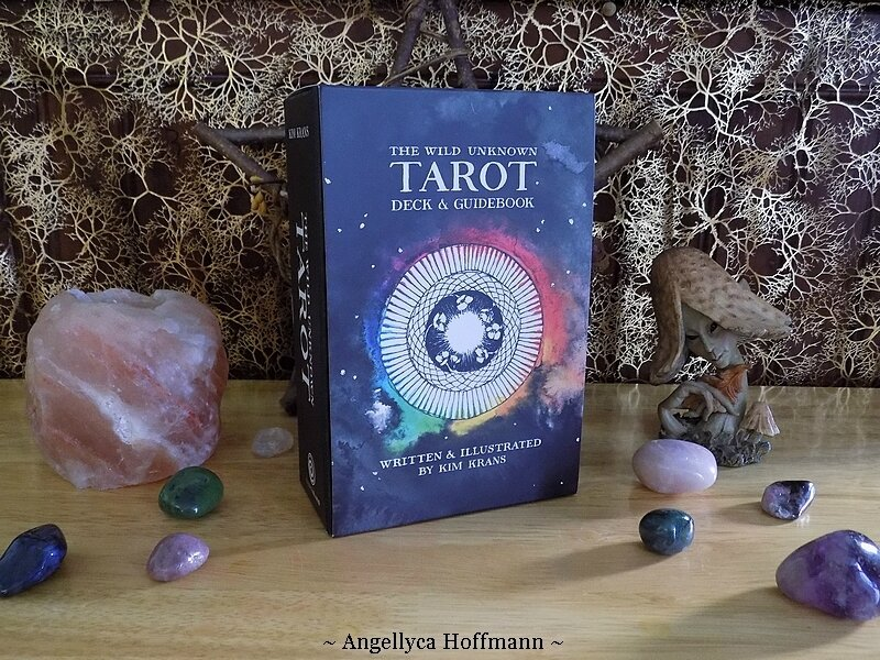The Wild Unknown Tarot - Blog Ésotérique Samhain Sabbath