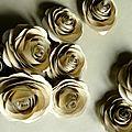 roses kraft ©Kalifragili (tous droits réservés)