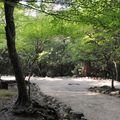 parc momijidami (5)