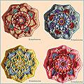 Persian tiles eastern jewels: 4 nouveaux octogones