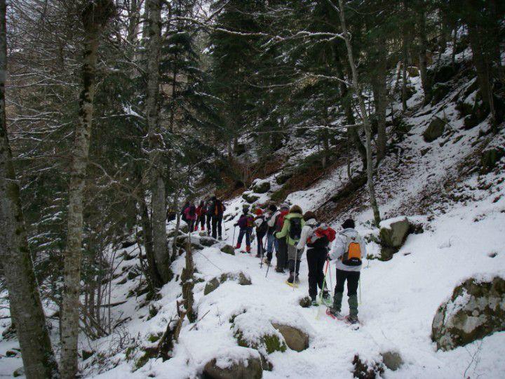 Raquettes sous le Mont Né février 2010 (05)