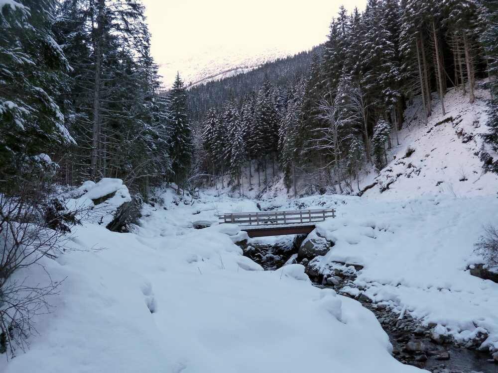 La passerelle sur le ruisseau de Gleyzin