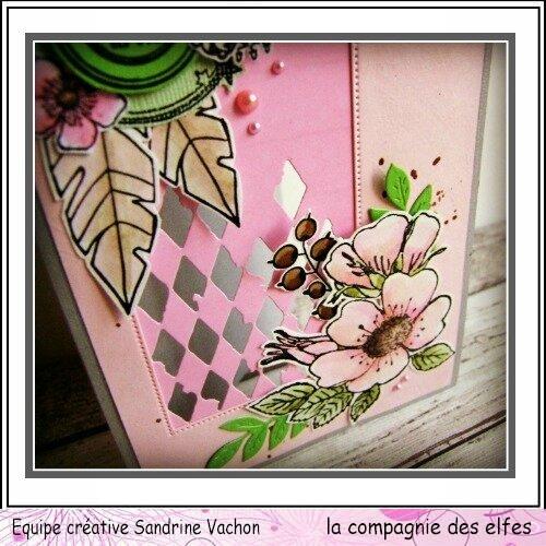 Sandrine VACHON 22 mars dt LCDE (4)