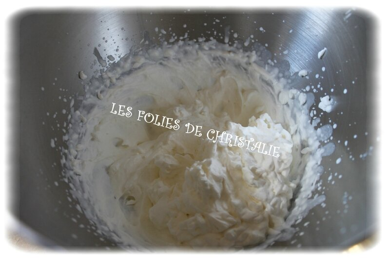 Mousse agrumes 8