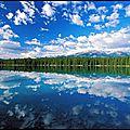 reflets sur l eau 19